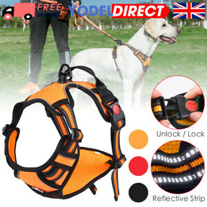 No-pull Dog Harness Outdoor Adventure Pet Vest Padded Handle- Small - Large UK