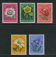 Netherlands 1952 Flowers semipostal--Attractive Topical (B238-42) MH