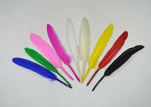100 Quality Goose Quill Feathers - 10cm to 15cm Long - 9 Colours - Arts & Crafts