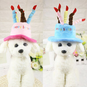 Birthday Hat for Small Cats & Dogs Cake & Candles Design Party Custom Accessory