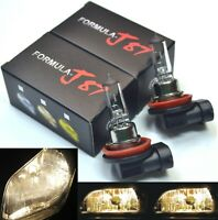 Rally H11 100W 3800K Stock Two Bulbs Head Light Low Beam Off Road Halogen Lamp