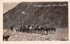 Huaytiquina Argentina Horses Llama Real Photo Antique Postcard J49763