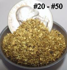 GOLD NUGGETS 9+ GRAMS Alaska Natural Placer #20-#50 Gold Dust Creek
