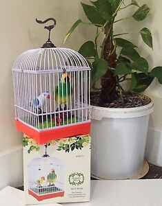 ELECTRONIC BIRDS BEAUTIFUL BIG PARROT WITH SPARROW SINGING MOVING CHIRPING PET