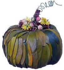Pumpkin Natural Leaf Twig Berry Fall Harvest Halloween Thanksgiving Decor 377f