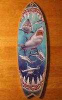 n190D NEW LARGE SHARK TOOTH NECKLACE LUCKY SURFER TALISMAN BEACH TEETH SURF