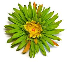 "Large 5.5"" Green Yellow Silk Flower Hair Clip Spider Mum Handmade Homecoming"