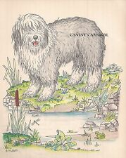 Rare Old English Sheepdog Dog Vintage Art Print 1950