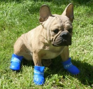4 Anti-Slip Unisex Pet Dogs Waterproof Rubber Protective Rain Boots Dog Booties