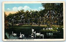 View of Swan Lake in City Park Swans New Orleans Louisiana Vintage Postcard A80