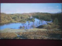 POSTCARD CUMBRIA TARN HOWS - NICE VIEW OVER THE WATER