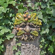 Tree Ent Face Leaf Plaque Wall Garden Ornament Greenman Myth Trunkcorn 80601