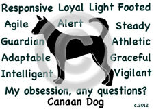 Canaan Dog My Obsession, Any Questions? T-shirt ,Ls, or Sweatshirt Choices
