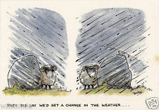"Humorous Postcard ""They did say we'd get a change in the weather"" Printed in UK"