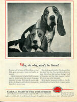 1957 Capital Stock Company Basset Hound Dog Print Ad