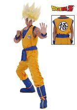 Kid's Super Saiyan Goku Dragon Ball Z Costume SIZE L (Used with defect)