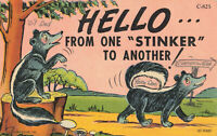 Postcard Hello From One Stinker To Another Posted 1956