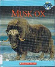 Musk Ox (Natures Children)