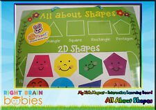 Kids Magnet All About Shapes - Educational Interactive Learning Magnetic Board