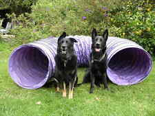 "Dog Agility Equipment 10' Tunnel FREE SHIPPING! (4"" sp)"