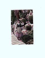 Ansichtskarte/Postkarte Kakteen Jardin Exotique de Monaco Echinocactus Grusonii