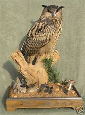 Taxidermy for Pleasure & Profit +Practical Taxidermy CD