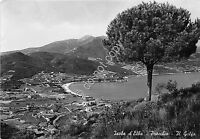 Cartolina - Postcard - Isola d'Elba - Procchio - Panoorama - 1954