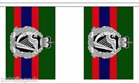 British Army Royal Irish Regiment Polyester Flag Bunting - 6m long with 20 Flags