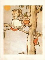 DOROTHY WALL, A TINY STORY of BLINKY BILL the KOALA POSTCARD - LARGE SIZE