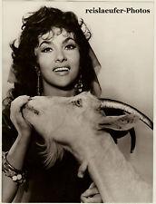 Gina Lollobrigida's precious goat, Orig.Photo 1957