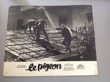 PHOTO D'EXPLOITATION (LOBBY CARD) : LE PIGEON (Gassman, Mastroianni...)
