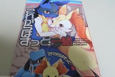 POKEMON doujinshi Lucario X Braixen (A5 28pages) Dogear Korekaramo kemono furry