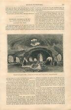 Exposition Universelle de Paris Aquarium d'Eau Douce Parc Réservé GRAVURE 1867