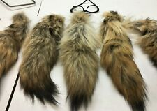 """1 Coyote Tail, """"Select"""" 14-16"""" , fur, tail, fluffy, Coytail"""