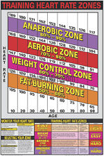 Cardiovascular Fitness TRAINING HEART RATE ZONES Professional Wall Chart Poster