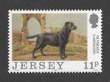 Art Body Portrait Postage Stamp Black Labrador Retriever Dog Jersey Uk 1988Mnh