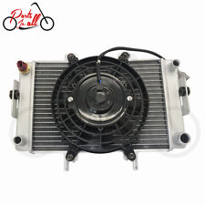 RADIATOR ASSY With FAN ELECTROMOTOR ASSY for Buyang Feishen 300cc ATV/Quad