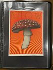Chuck Sperry Know Thyself Mushroom Print /100