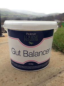 Protexin Equine Premium Gut Balancer 400g, 700g, 3.5kg or 7kg Horse Supplement