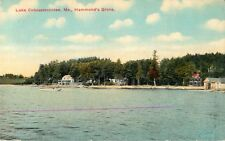 A View Of Homes In Hammond's Grove, Lake Cobbosseecontee, Maine ME