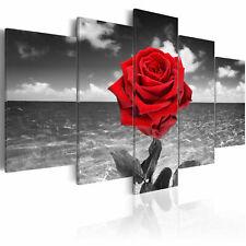 BLUMEN ROSE SCHWARZ WEIß ROT Wandbilder xxl Bilder Vlies Leinwand 020110-132