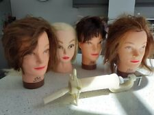 DENNIS WILLIAMS DW HAIRDRESSING TRAINING HEADS PLUS 1 OTHER AND STAND CLAMP