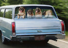 Pug Dogs In Station Wagon Avanti Humorous  Funny Birthday Card photo