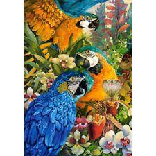 NOUVEAU! Castorland Amazon 1000 Pièce perroquets Colorés Oiseaux Jigsaw Puzzle C-103485