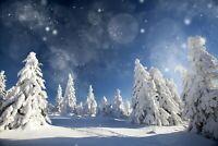 A1 | Winter Wonderland Poster Art Print 60 x 90cm 180gsm Snow Trees Gift #8594