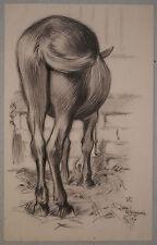 Beau Dessin Ancien Fusain Cheval Animal Écurie LUBIN DE BEAUVAIS 1897 XIXe