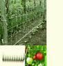 rete di sostegno tenax per ortaggi 1.5x1000 metri rampicanti ortaggi piante