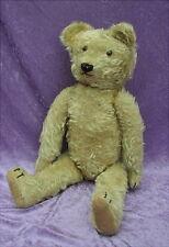 Alter Teddy Bär Bear aus Nachlass  um 1925 Höhe 60 Centimeter