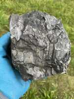 Petrovsky Shungite Piedras Bruta Halbelite 1200 Gramos #242Russland