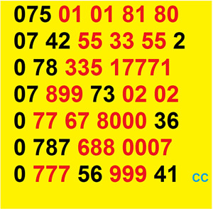 New Vodafone GOLD VIP BUSINESS EASY MOBILE PHONE NUMBER SIM CARD ee O2 good UK